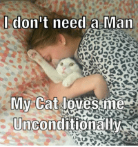 Crazy, Cat, and Man: Idon't needl a Man  My Cat loves me  Unconditionaliy <p>Crazy Cat Ladies Everywhere.</p>