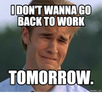 Memes, Work, and The Weekend: IDONT WANNA GO  BACK TO WORK  TOMORROW  COM Why did the weekend go so fast! 😭😭😭
