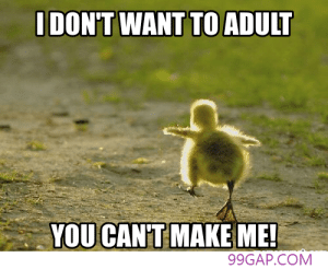 Funny, Meme, and Com: IDON'T WANT TO ADULT  YOU CANT MAKE ME!  99GAP.COM #Funny Meme Of The Week