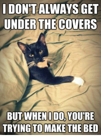Conne: IDONTALWAYS GET  UNDER THE COVERS  BUT WHEN IDO, YOURE  TRYING TO MAKE THE BED  conn