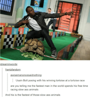 Animals, Ass, and Usain Bolt: idreaminwords:  frantzfandom  awisemanoncesaidnothing:  Usain Bolt posing with his winning tortoise at a tortoise race  are you telling me the fastest man in the world spends his free time  racing slow ass animals  And his is the fastest of those slow ass animals Training turtles while sponsored by Puma