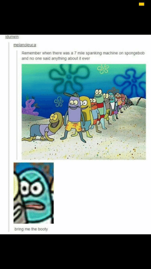 That face tho: idunwin  melanoleuca  Remember when there was a 7 mile spanking machine on spongebob  and no one said anything about it ever  bring me the booty That face tho