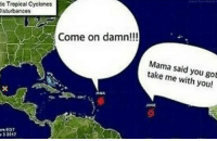 This meme won't be topped idc 🙅🏾‍♂️: ie Tropieal Cyclones  sturbances  Come on damn!!!  Mama said you got  take me with you!  J0se  5281 This meme won't be topped idc 🙅🏾‍♂️