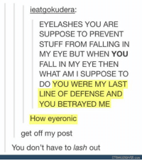 Fall, Memes, and Stuff: ieatgokudera:  EYELASHES YOU ARE  SUPPOSE TO PREVENT  STUFF FROM FALLING IN  MY EYE BUT WHEN YOU  FALL IN MY EYE THEN  WHAT AM I SUPPOSE TO  DO YOU WERE MY LAST  LINE OF DEFENSE AND  YOU BETRAYED ME  How eyeronic  get off my post  You don't have to lash out  STRANGEBEAVER.com so punny https://t.co/cm85XnIFgA