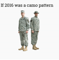 More savagery for meme WAR: If 2016 was a camo pattern More savagery for meme WAR
