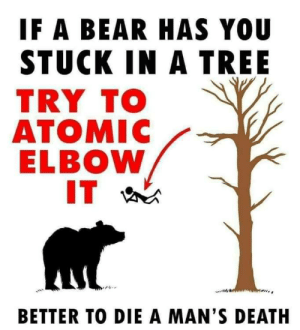 Dank, Memes, and Target: IF A BEAR HAS YOU  STUCK IN A TREE  TRY TO  ATOMIC  ELBOW  BETTER TO DIE A MAN'S DEATH It will be painful but Ill be a legend by goodlyearth MORE MEMES