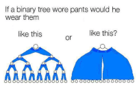 Computer, Science, and Tree: If a binary tree wore pants would he  wear them  like this  like this? Top 10 Questions Computer Science Still Cant Answer