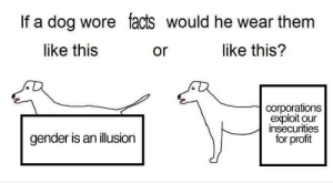 trustmeimanengiqueer:  This is too much : If a dog wore facts would he wear them  like this  or  like this?  corporations  exploit our  insecurities  for profit  gender is an illusion trustmeimanengiqueer:  This is too much