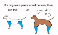 some sloppy oc on those trendy memes: If a dog wore pants would he wear them  like this  or some sloppy oc on those trendy memes