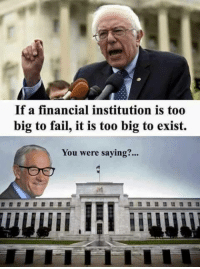 Tell 'em Ron Paul!   Join Us: V is For Voluntary: If a financial institution is too  big to fail, it is too big to exist.  You were saying?... Tell 'em Ron Paul!   Join Us: V is For Voluntary