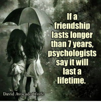 If a  friendship  lasts longer  than 7 years,  psychologists  Say will  last a  lifetime.  David Avocado Wolfe