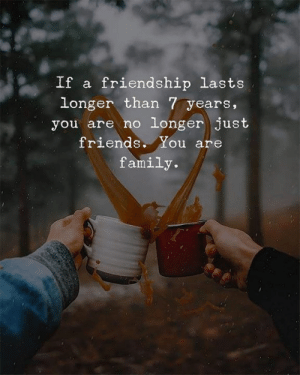 C/o theidealist: If a friendship lasts  longer than 7 years,  you are no longer just  friends. You are  family. C/o theidealist