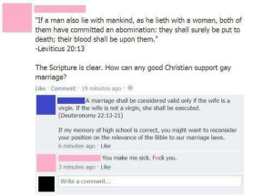 "Marriage, School, and Tumblr: ""If a man also lie with mankind, as he lieth with a woman, both of  them have committed an abomination: they shall surely be put to  death; their blood shall be upon them.""  Leviticus 20:13  The Scripture is clear. How can any good Christian support gay  marriage?  Like Comment 19 minutes ago  A marriage shall be considered valid only if the wife is a  virgin. If the wife is not a virgin, she shall be executed.  (Deuteronomy 22:13-21)  If my memory of high school is correct, you might want to reconsider  your position on the relevance of the Bible to our marrlage laws.  6 minutes ago Like  You make me sick. Fick you.  3 minutes ago Like  Write a comment.. memehumor:  You make me sick. F*ck You!"