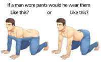 If A Dog Wore Pants: If a man wore pants would he wear them  Like this?  Like this?  or