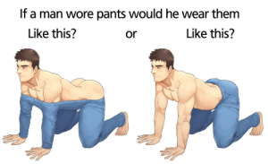 plowjob:  I.. : If a man wore pants would he wear them  Like this?  Like this?  or plowjob:  I..
