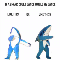 New year who dis? newyear 2016 2015 happynewyear dogpants outwiththeold inwiththenew newyearnewme year nye balldrop timessquare ootn meme lol haha trend feelthebern hilaryclinton trump hashtag leftshark rightshark cold thedress netflixandchill elnino isis happy resolution: IF A SHARK COULD DANCE WOULD HE DANCE  LIKE THIS OR LIKE THIS? New year who dis? newyear 2016 2015 happynewyear dogpants outwiththeold inwiththenew newyearnewme year nye balldrop timessquare ootn meme lol haha trend feelthebern hilaryclinton trump hashtag leftshark rightshark cold thedress netflixandchill elnino isis happy resolution
