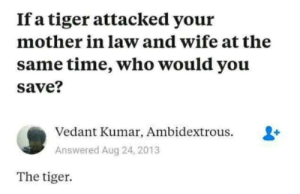 Can confirm, I am the Tiger: If a tiger attacked your  mother in law and wife at the  same time, who would you  save?  Vedant Kumar, Ambidextrous.  Answered Aug 24, 2013  The tiger Can confirm, I am the Tiger