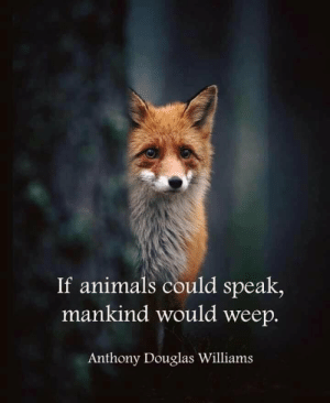 Animals, Peta, and Im 14 & This Is Deep: If animals could speak,  mankind would weep.  Anthony Douglas Williams It's not peta for once