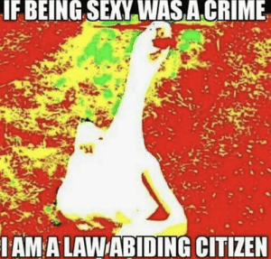 If Being Sexy Was A Crime Then I Am Arrest: IF BEING SEXY WAS ACRIME  IAM A LAWABIDING CITIZEN If Being Sexy Was A Crime Then I Am Arrest