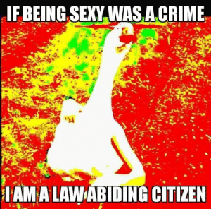 meirl by rogerthatkn MORE MEMES: IF BEING SEXY WASA.CRIME  IAMA LAWABIDING CITIZEN meirl by rogerthatkn MORE MEMES