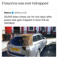 rt: if beyonce was ever kidnapped  Metro @MetroUK  20,000 bees chase car for two days after  queen bee gets trapped in boot trib.al/  3HfDBn0 rt