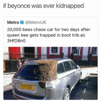 😂lol: if beyonce was ever kidnapped  Metro @MetroUK  20,000 bees chase car for two days after  queen bee gets trapped in boot trib.al/  3HfDBn0 😂lol