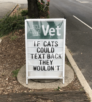 If cats could text: IF CATS  COULD  TEXT BACK  THEY  WOULDN 'T If cats could text