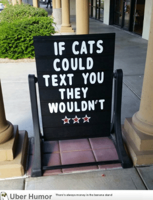 Cats, Food, and Money: IF CATS  COULD  TEXT YOU  THEY  WOULDN'T  of  There's always money in the banana stand failnation:  At my local pet food store.