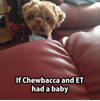 Chewbacca: If Chewbacca and ET  had a baby