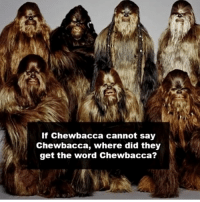 What do you think? 😱🔥 Admin: Finn, SWHub: If Chewbacca cannot say  Chewbacca, where did they  get the word Chew bacca? What do you think? 😱🔥 Admin: Finn, SWHub