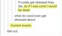 Nice, Current Events, and Coral: If corals get stressed they  die, so if I was coral I would  be dead  what do coral even get  stressed about  Current events  Get out. Wavy nice
