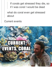 Memes, 🤖, and Current Events: If corals get stressed they die, so  if I was coral I would be dead  what do coral even get stressed  about  Current events  CURRENT  EVENTS, CORAL Badum tss!