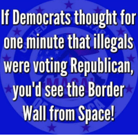 "Family, Memes, and True: If Democrats thought for  one minute that illegals  were voting Republican,  you'd see the Border  Wall from Space! Anyone who works in the ""real world"" and is interested in true prosperity for themselves and their family would be foolish to vote Democrat."