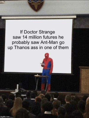 me🐜irl: If Doctor Strange  saw 14 million futures he  probably saw Ant-Man go  up Thanos ass in one of them  mgilip me🐜irl