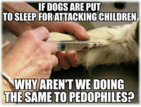Pedophillic: IF DOGS ARE PUT  TO SLEEP FORATTACKING CHILDREN  WHY ARENTWE DOING  THE SAME TO PEDOPHILES?