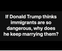Donald Trump, Trump, and Why: If Donald Trump thinks  immigrants are so  dangerous, why does  he keep marrying them?