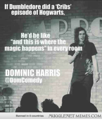 """Be Like, Dumbledore, and Memes: If Dumbledore did a 'Cribs'  episode of Hogwarts,  He'd be like  """"and this is where the  magic happens"""" in every room  DOMINIC HARRIS  @DomComedy  Banned in O countries  MUGGLENET MEMES.COM <p>MTV cribs Hogwarts edition <a href=""""http://ift.tt/L12afz"""">http://ift.tt/L12afz</a></p>"""