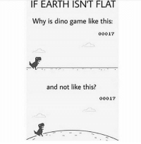 Dm to a flat Earther 😂: IF EARTH ISNT FLAT  Why is dino game like this:  00017  and not like this?  00017 Dm to a flat Earther 😂