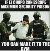 Gym time @aestheticelite 😎: IF EL CHAPO CAN ESCAPE  MAXIMUM SECURITY PRISON  MARINA  egymnmemesandmotivation  YOU CAN MAKEIT TO THE  HYM Gym time @aestheticelite 😎