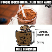 Dinosaur, Drinking, and Memes: IF FOODS LOOKED LITERALLY LIKE THEIR NAMES  MGAG  Drink la.  I won't bite.  *kepit*  Or will 1?  MILO DINOSAUR I'm feeling thirsty now. Type @ M and the first friend who appears has to belanja you a Milo Dinosaur!