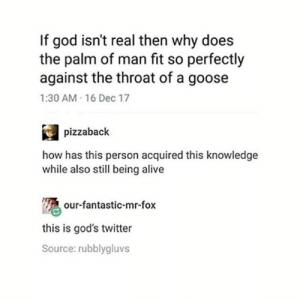 Alive, God, and Twitter: If god isn't real then why does  the palm of man fit so perfectly  against the throat of a goose  1:30 AM 16 Dec 17  pizzaback  how has this person acquired this knowledge  while also still being alive  our-fantastic-mr-fox  this is god's twitter  Source: rubblygluvs gods twitter
