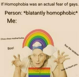 homophobia: If Homophobia was an actual fear of gays.  Person: *blatantly homophobic*  Me:  Choo choo motherfucka  fear the rainbow  Вoo!  here to haunt you