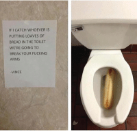 IF I CATCH WHOEVER IS  PUTTING LOAVES OF  BREAD IN THE TOILET  WE'RE GOING TO  BREAK YOUR FUCKING  ARMS  VINCE What a waste of a loaf -Udy