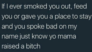 Bad, Bitch, and Yo: If I ever smoked you out, feed  you or gave you a place to stay  and you spoke bad on my  name just know yo mama  raised a bitch