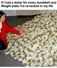 Funny, Life, and Love: If I had a dollar for every dumbbell and  Weight plate l've re-racked in my life  @bodybuilding_humour .. 💥💥💥💥💥💥💥 . .. that's how I got these gains. 💥💥💥💥💥💥💥 FOLLOW US . ⬇️⬇️⬇️⬇️⬇️⬇️⬇️⬇️⬇️⬇️⬇️⬇️ 🔥🔥@bodybuilding_humour 🔥🔥 ⬆️⬆️⬆️⬆️⬆️⬆️⬆️⬆️⬆️⬆️⬆️⬆️ ... workout bodybuilding gymmemes crossfit strong motivation instalike powerlifting Quote quotes gymhumour deadlift squat bench love gymhumour funny joke legday instagood fitspo motivation girlswholift fitchick mma conormcgregor