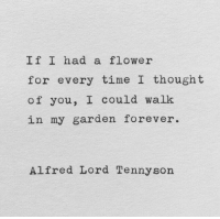 Flower, Forever, and Time: If I had a flower  for every time I thought  of you, I could walk  in my garden forever.  Alfred Lord Tennysorn