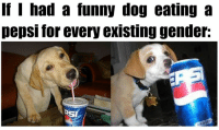 funny dog: If I had a funny dog eating a  pepsi for every existing gender:  SI