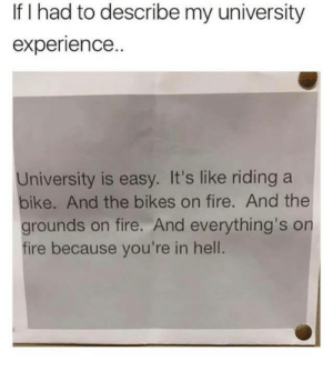 If you are a student Follow @studentlifeproblems: If I had to describe my university  experience.  University is easy. It's like riding a  bike. And the bikes on fire. And the  grounds on fire. And everything's on  fire because you're in hell. If you are a student Follow @studentlifeproblems