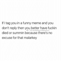 No excuse...: If I tag you in a funny meme and you  don't reply then you better have fuckin  died or summin because there's no  excuse for that malarkey  FB The Archbishop of Banterbury No excuse...