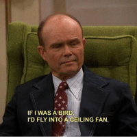 Memes, That 70s Show, and 70s Show: IF I WAS A BIRD  I'D FLY INTO A CEILING FAN. me too @harlequin [tv show: that 70s show]
